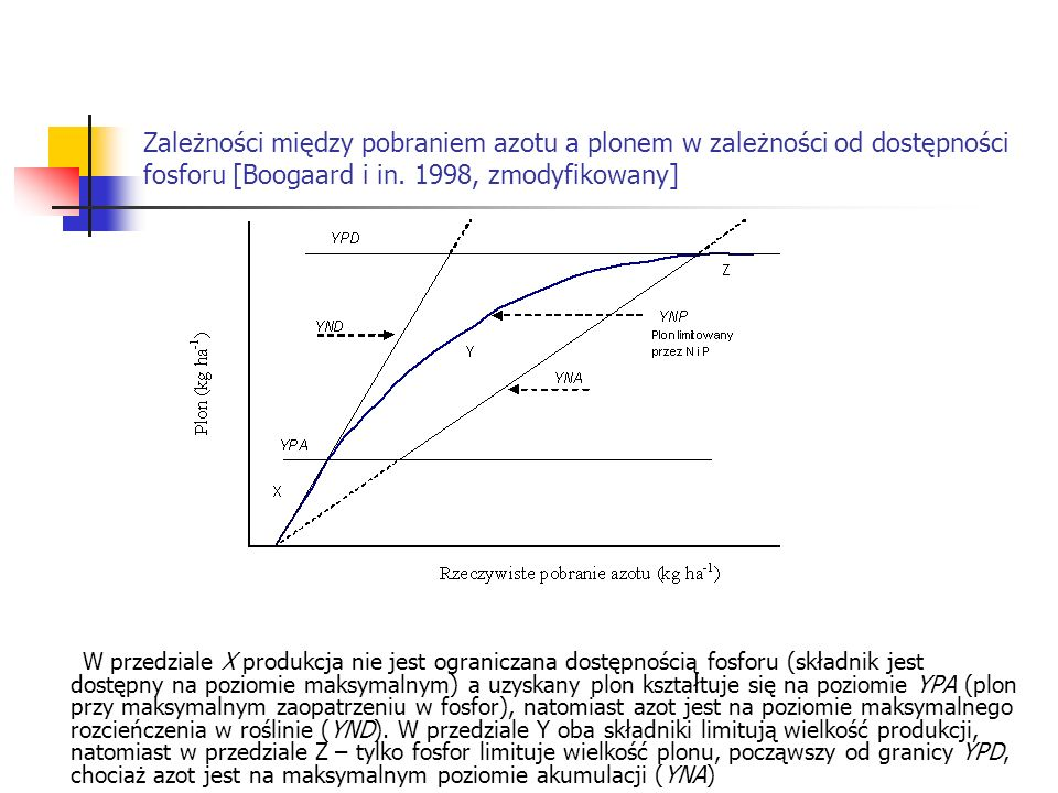 Zależności między pobraniem azotu a plonem w zależności od dostępności fosforu [Boogaard i in. 1998, zmodyfikowany]